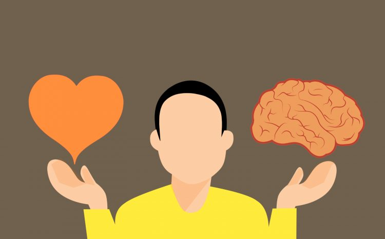 """""""Καρδιά ή Εγκέφαλος; What is the source of emotions?"""""""